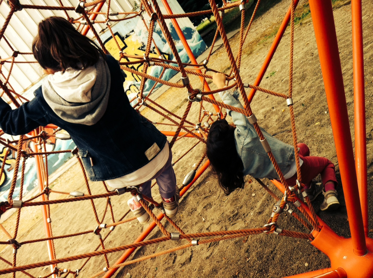 nenas en parque enredoso