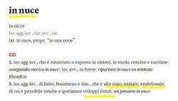 """definizione di """"in nuce"""" dal De Mauro"""